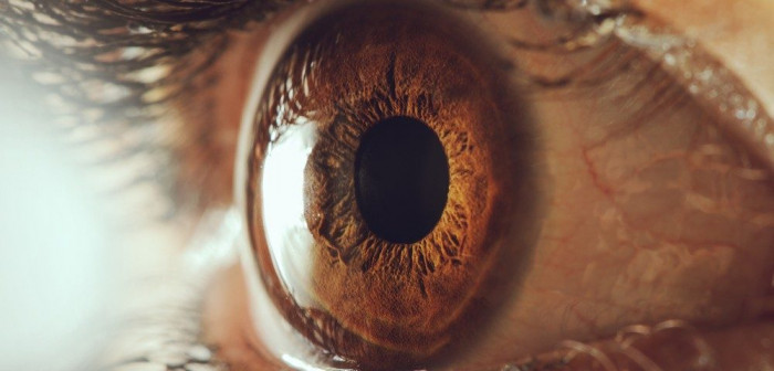 NMOSD MS and OCT/Neuromyelitis News/close-up of person's eye